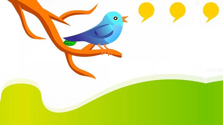 Qué hacer si se envía spam desde nuestra cuenta de Twitter