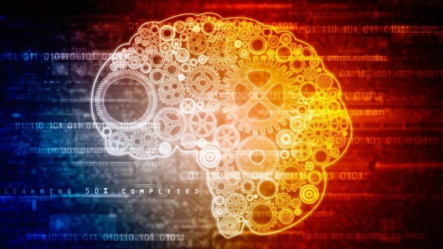 Cómo funciona el cerebro en la toma de decisiones