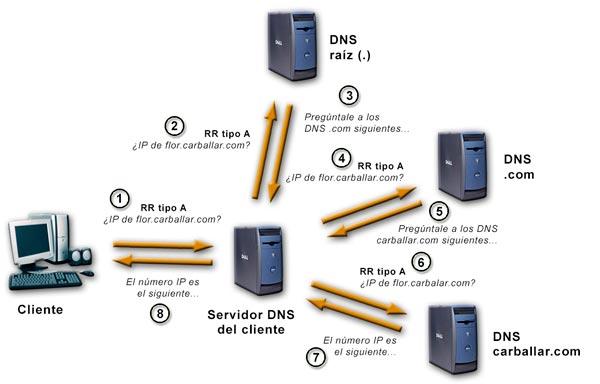 Proceso de consulta de un número IP