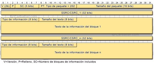 Formato de los paquetes SDES