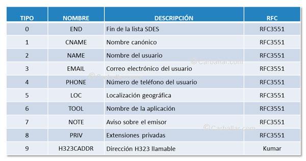 Tipos de informaciones incluidas en SDES